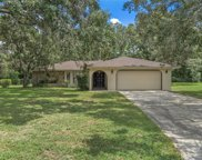 1548 Meadow Lark Road, Spring Hill image