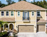 7225 Bay Laurel Court, Wesley Chapel image