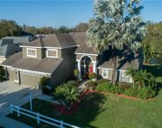 21212 Preservation Drive, Land O' Lakes image