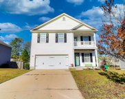 219 Eagle Pointe Dr, Chapin image