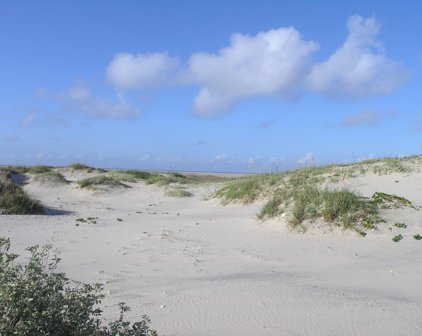 Tract 77 Other, South Padre Island