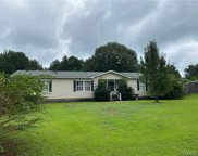 17026 Finnell  Road, Northport image