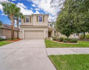 7418 Forest Mere Drive, Riverview image