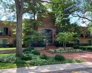 1220 Park Avenue Unit #125, Highland Park image
