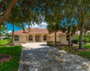 161 Willow Bend Way, Osprey image