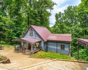 18925 Bream Bluff Road, Athens image