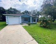 8319 N Greenwood Avenue, Tampa image