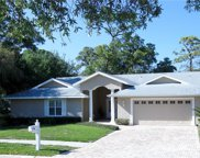 1391 Indian Trail S, Palm Harbor image