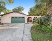 4604 Southbreeze Drive, Tampa image