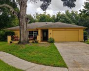 3428 Baugh Drive, New Port Richey image