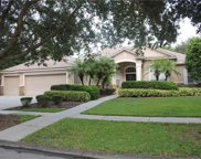 5721 Eaglemount Circle, Lithia image