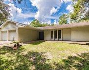 13305 Cain Road, Tampa image