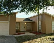 10109 Royal Acres Court, Tampa image