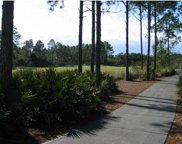134 Spoonbill Ct, Carrabelle image