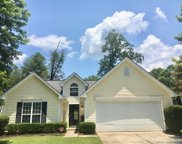 1394 Spring View  Court Unit #56, Rock Hill image