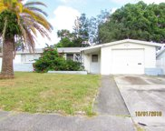 5423 Celcus Drive, Holiday image
