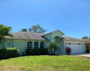 10620 Wood Ibis Ave, Bonita Springs image