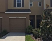4831 White Sanderling Court, Tampa image