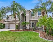 7301 Night Heron Dr, Land O' Lakes image