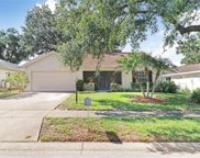 1409 Wicklow Drive, Palm Harbor image