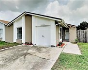 10504 Pathview Place, Tampa image
