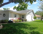 3207 Mcmath Drive, Palm Harbor image