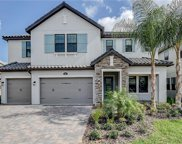 17909 Woodland View Drive, Lutz image