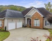 212 Canary, Ringgold image