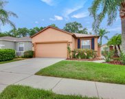 20950 Tangor Road, Land O' Lakes image