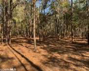 Forest View Lane, Robertsdale image