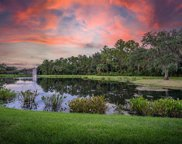 18833 Duquesne Drive, Tampa image