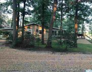 385 County Road 907, Cedar Bluff image