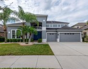 13714 Artesa Bell Drive, Riverview image