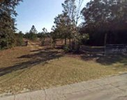 217th Road, Live Oak image