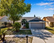 7110 Hollowell Drive, Tampa image
