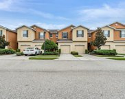 5012 White Sanderling Court, Tampa image