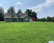 351 County Road 1077, Danville image