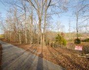 Parker Loop, Birchwood image