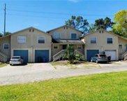 5802 Mohr Loop, Tampa image