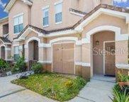 10439 Villa View Circle Unit 10439, Tampa image