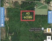 000 East Homesville Road, Downsville image