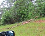 LOT 7 Pintail Drive, Cataula image