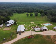 11173 County Road 456, Henderson image