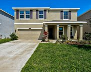 2836 Living Coral Drive, Odessa image