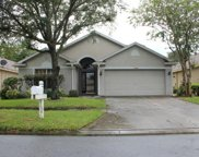 11346 Cypress Reserve Drive, Tampa image