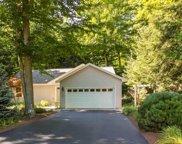 8650 Bent Pine Drive, Lake Ann image