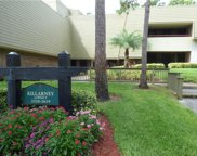 36750 Us Highway 19  N Unit 09125, Palm Harbor image