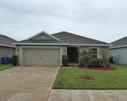 30755 Water Lily Drive, Brooksville image