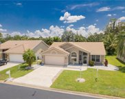 13571 Cherry Tree  Court, Fort Myers image