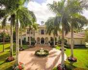 2422 Indian Pipe Way, Naples image